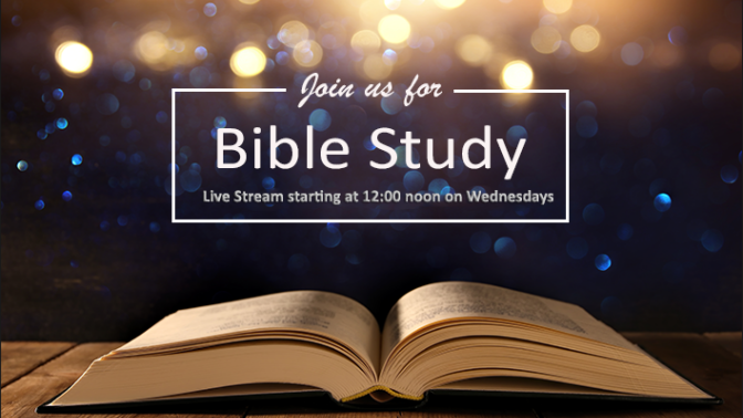 The wesley study bible review